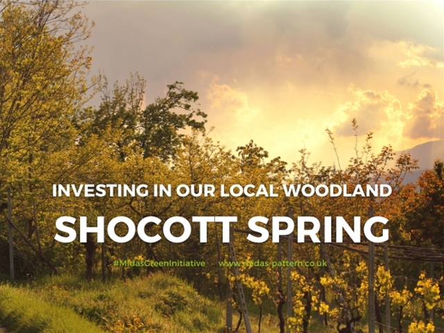Why Support Your Local Woodland